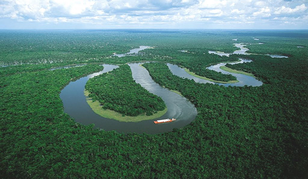 congo basin Africa