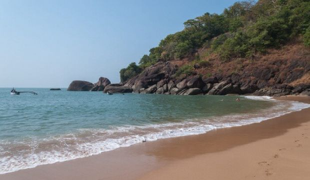 butterfly beach Goa