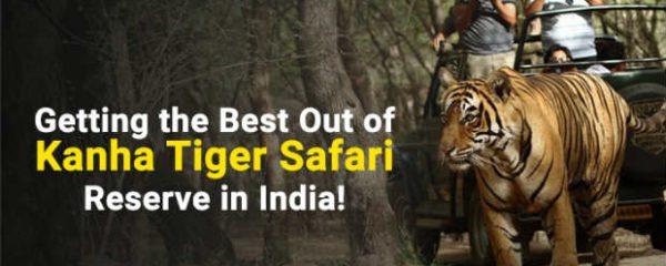 kanha tiger safari