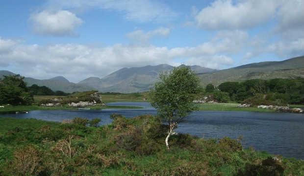 national park Killarney, Ireland