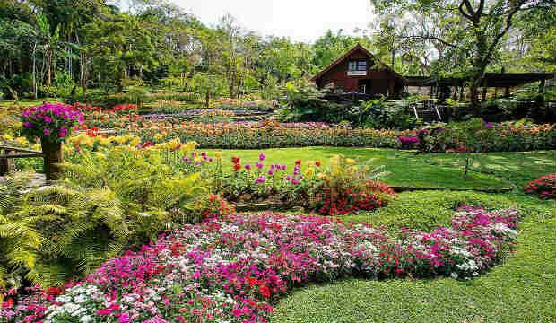 mae fah luang art & cultural park in Chiang rai