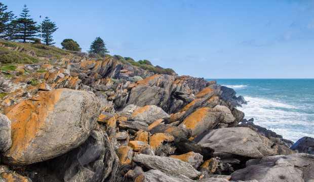Kangaroo Island nature